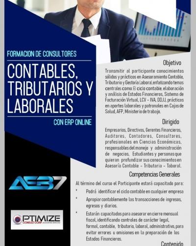 FORMACIÓN DE CONSULTORES CONTABLES, TRIBUTARIAS Y LABORALES