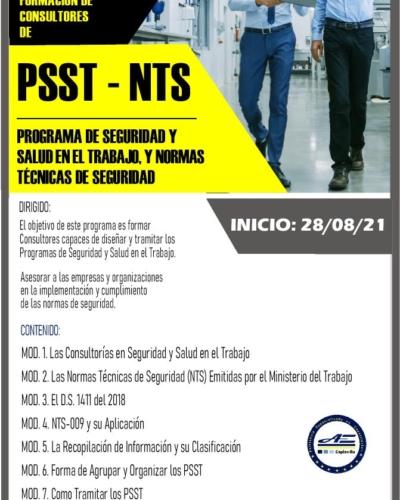 FORMACIÓN DE CONSULTORES DE PSST y NTS